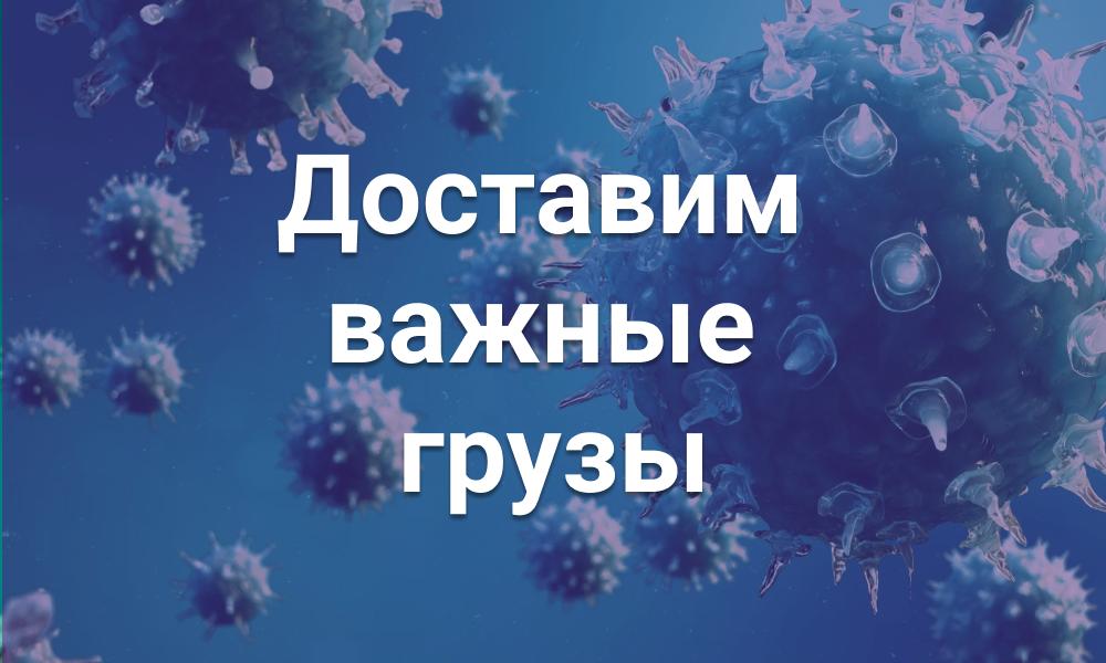 Новости сервиса «Аукцион»